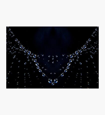 Natures Necklace Photographic Print