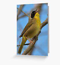 Yellowthroat Yodelling  Greeting Card