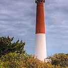 Barnegat Lighthouse, New Jersey by Michael Mill