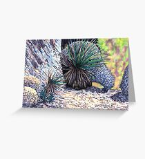 c10-Desert Spoons with Boulders Greeting Card
