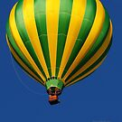 . . .My Beautiful Balloon by Susan Vinson