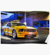 2008 Ford Shelby GT Poster