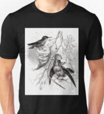 Robert Kretschmer Menniskans härledning och könsurvalet illustration sida II 56 Unisex T-Shirt