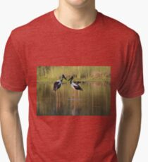 Sunset Glow Tri-blend T-Shirt