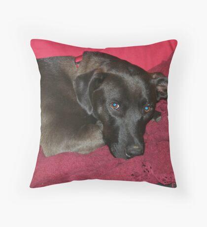 Sasha Throw Pillow