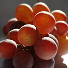 Grapes II by TriciaDanby