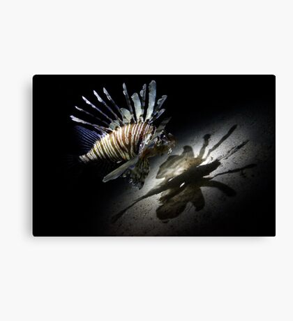 The Butterfly Effect Canvas Print