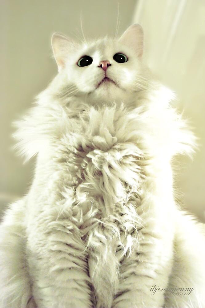 Spoiled Bratty Kitty by ibjennyjenny
