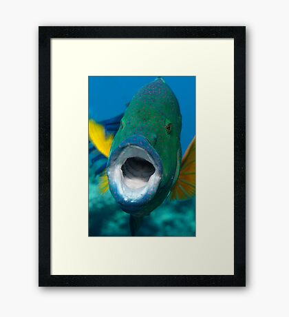 Oh sole mio! Framed Print