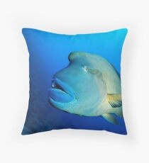 The french Emperor Throw Pillow