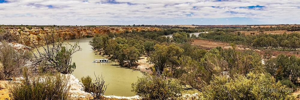 Murray River views at Swan Reach by Roger Neal