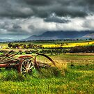 Old Wagon by Eve Parry