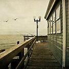 Seal Beach Pier by Suzanne Cummings