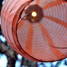 Paper Lantern by Brittany Davenock
