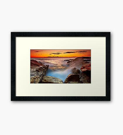 A Barnacle's Delight Framed Print