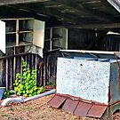 Uwharrie Shed (HDR) by lroof