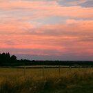 Sunset from Marshmans Road, Rangiora by Elaine Stevenson