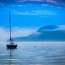 Orcas Sailboat by Inge Johnsson