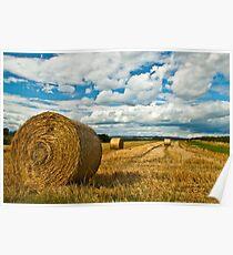 Hay Fields of Heyshott Poster