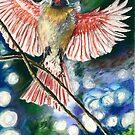 Cardinal by mleboeuf