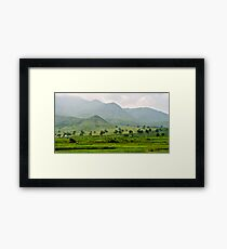 The Monsoon Mood of Nature-2/2011 Framed Print
