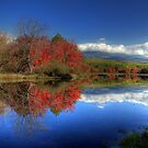 Autumn at Mt. Katahdin by Lori Deiter