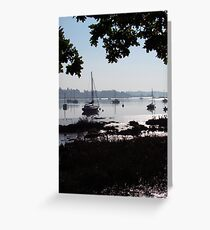 Silhouettes Over The Deben  Greeting Card