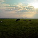 In the Dutch mountains by heinrich