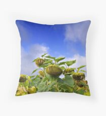 Burgundy sunflower. Throw Pillow
