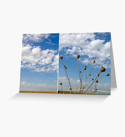 Expansive Greeting Card