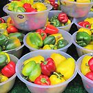 Bell Peppers by Christine  Wilson