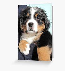 Baby Maxwell Greeting Card