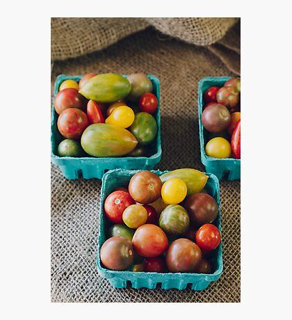 Tomato Rainbow Photographic Print