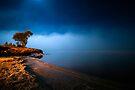 Into The Blue by Michael Treloar
