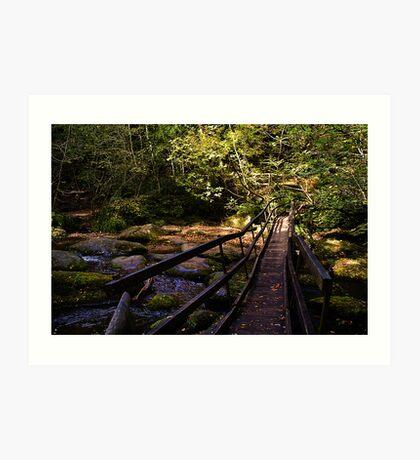 Log Bridge Art Print