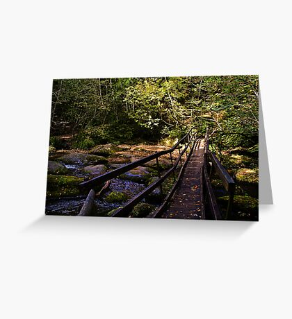 Log Bridge Greeting Card