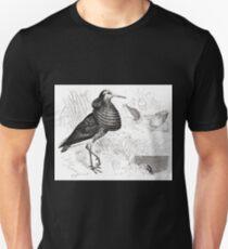 Robert Kretschmer Menniskans härledning och könsurvalet illustration sida II 31 Unisex T-Shirt