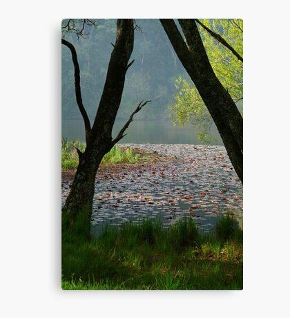 Jubilee Lake,Daylesford Canvas Print