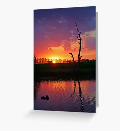 Elmore Sunset Greeting Card