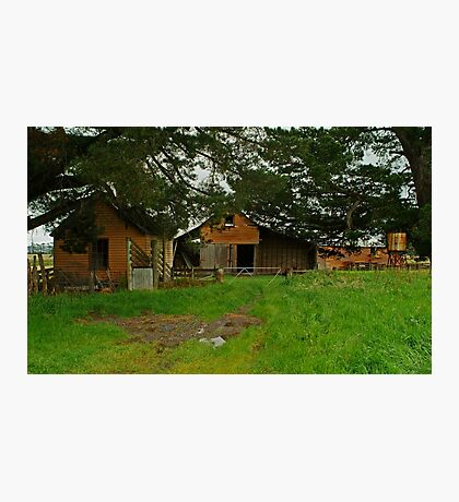 Farm Near Ballan,Victoria Photographic Print