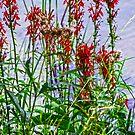 Flowers along the Lake by Monica Engeler