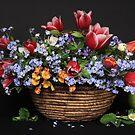 Spring Fiesta by panganatalie