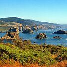 Mendocino Shoreline by Tamara Valjean