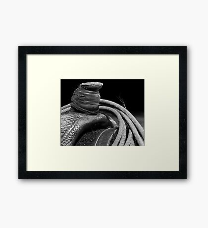 This Ain't His First Rodeo Framed Print