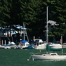 Boats at Harrison Hot Springs by MaluC