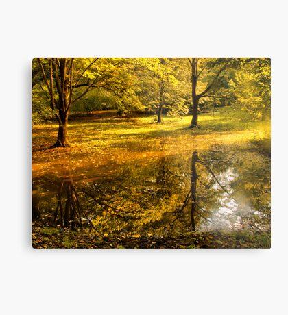 Отражение осени -Fall Reflection Metal Print