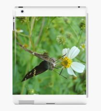 Long-tailed Blue Skipper on Spanish Needles iPad Case/Skin