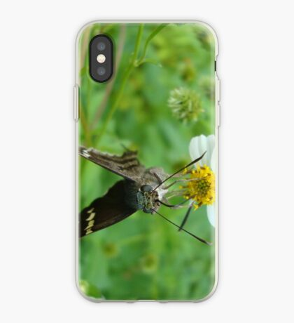 Long-tailed Blue Skipper on Spanish Needles iPhone Case