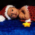 Newborn December by Sharon Robertson