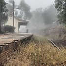 Kandos Railway Station NSW Australia by Bev Woodman